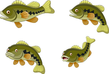 Vector illustration of Cartoon funny bass fish collection