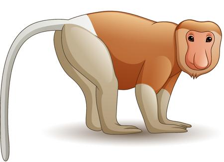 Illustration for Vector illustration of Cartoon proboscis monkey - Royalty Free Image