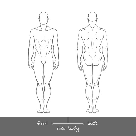 Ilustración de Healthy young man from front and back view in outline style. Male muscular body shapes linear illustration with the inscription: front and back. - Imagen libre de derechos