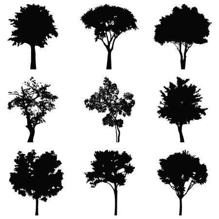Illustration for Set of nine trees vector silhouette - Royalty Free Image