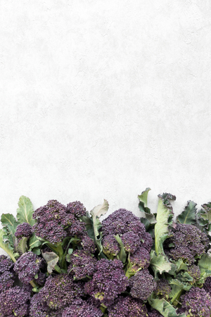 Photo for Top view of purple sprouting broccoli heads on gray background with lots of copy space.  - Royalty Free Image