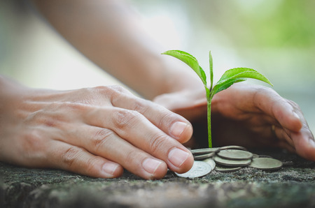 Foto de Hand protect money stack with plant growing on coins. saving money coins, Hands that are taking care of trees on coins, concept finance - Imagen libre de derechos