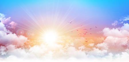 Foto de Panoramic sunrise. High resolution morning sky background. Rising sun and birds breaking through white clouds - Imagen libre de derechos