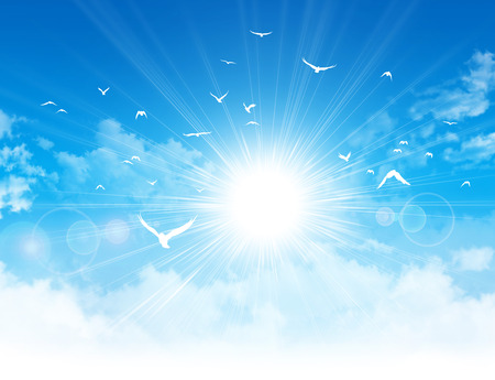 Photo pour White birds flight in front of the sunshine in a cloudy blue sky - image libre de droit