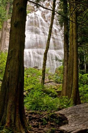 Photo for Bridal Veil Falls near Chilliwack, BC - Royalty Free Image