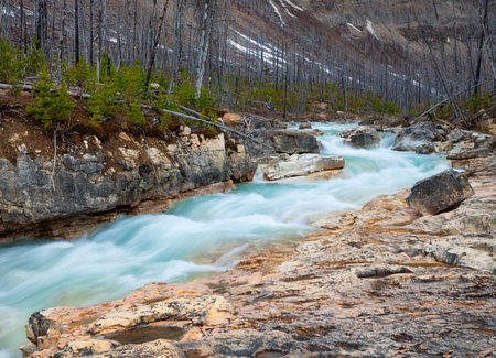 Photo pour Marble Canyon in Kootenay National Park, British Columbia, Canada - image libre de droit