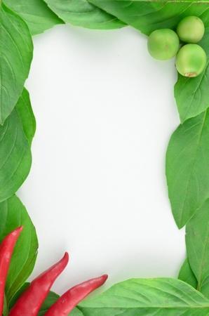 Beautiful fresh vegetable frame