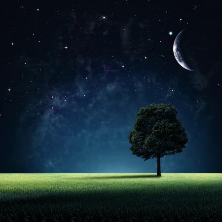 Foto de Starry night. Abstract natural backgrounds for your design - Imagen libre de derechos