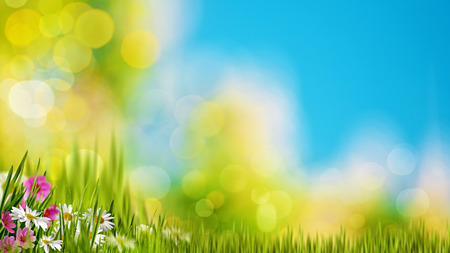 Photo pour Natural backgrounds with green foliage under bright summer sun - image libre de droit