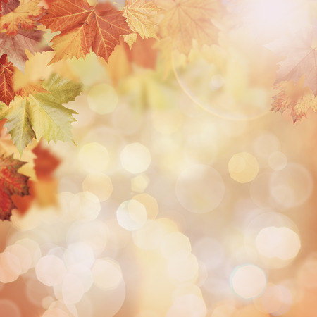 Photo for Abstract autumnal backgrounds with beauty bokeh - Royalty Free Image