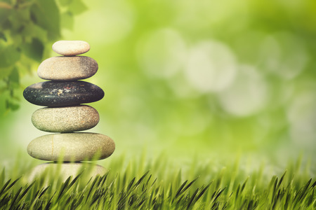 Foto de Wellness, health and natural harmony concept. Abstract natural backgrounds - Imagen libre de derechos
