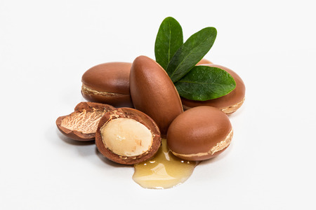 Photo for Argan oil, much appreciated in cosmetics - Royalty Free Image