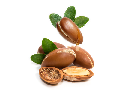 Photo for Argan oil. Argan nuts, with oil drop and leaves of its tree - Royalty Free Image