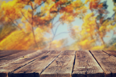 Photo pour image of front rustic wood boards and background of fall leaves - image libre de droit