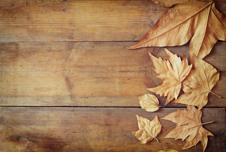 Photo pour top view image of autumn leaves over wooden textured background - image libre de droit