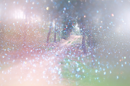 Photo for abstract blurred dreamy mystery fairy woods and glitter bokeh lights. filtered image and textured. - Royalty Free Image