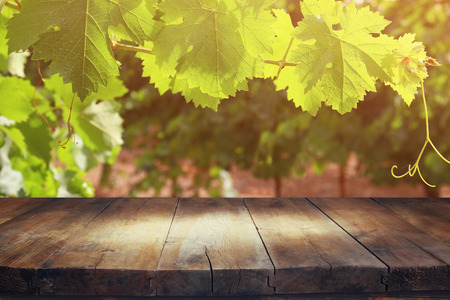 Photo for image of wooden table in front of Vineyard landscape. vintage filtered - Royalty Free Image