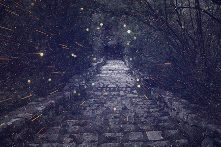 Foto de Abstract and mysterious image of old witch castle gate. Filtered photo. Glitter overlay - Imagen libre de derechos