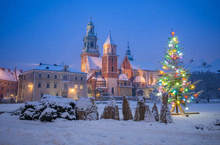 Illuminated Christmas tree on snow at night, Wawel cathedral and castle, Krakow, Poland