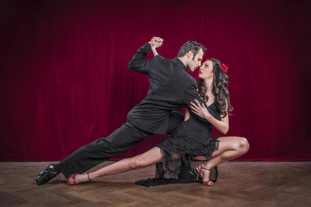 Photo for Portrait of young elegant tango dancers. - Royalty Free Image