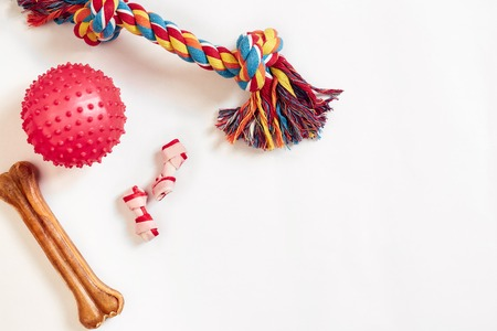 Photo for Dog toys set: colorful cotton dog toy and pink ball on a white background - Royalty Free Image