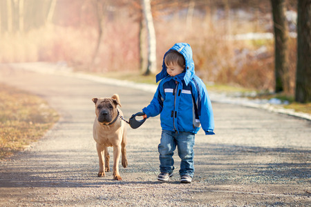 Photo for Little boy with his dog in the park, walking and smiling - Royalty Free Image