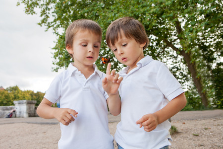 Foto de Cute little toddler boys, brothers, playing with butterfly outdoor in the park, summertime - Imagen libre de derechos