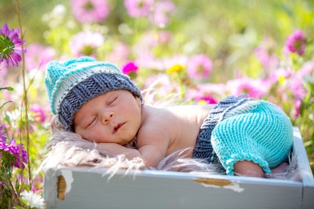 Photo for Cute newborn baby boy, sleeping peacefully in basket in flower garden - Royalty Free Image
