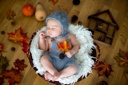 Photo pour Cute newborn baby boy, sleeping with autumn leaves in a basket at home, autumn ornaments around him - image libre de droit