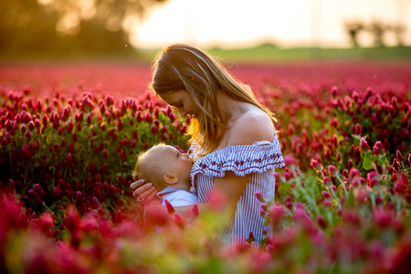 Photo for Beautiful young mother, breastfeeding her toddler baby boy in gorgeous crimson clover field on sunset, springtime - Royalty Free Image