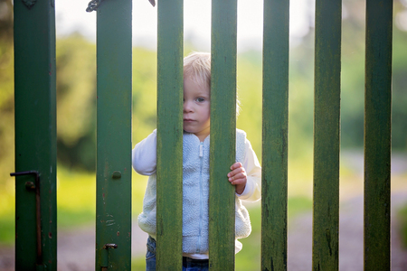 Photo for Sweet toddler boy, standing behind green wooden gate, smiling and looking at camera - Royalty Free Image