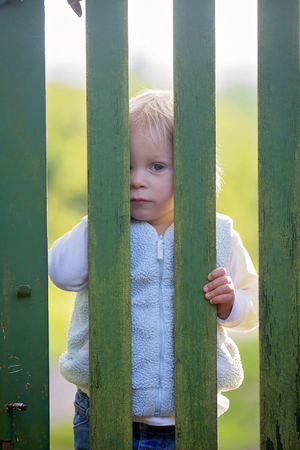 Sweet toddler boy, standing behind green wooden gate, smiling and looking at camera