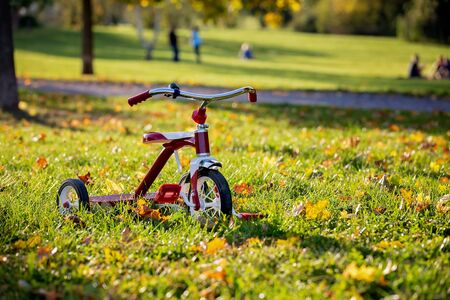 Photo for Red tricycle in the park on sunset, beautiful autumn day - Royalty Free Image
