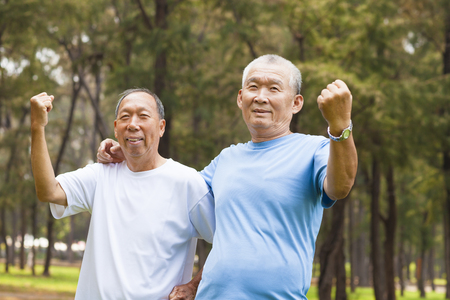 happy senior brothers enjoy retire time in the park