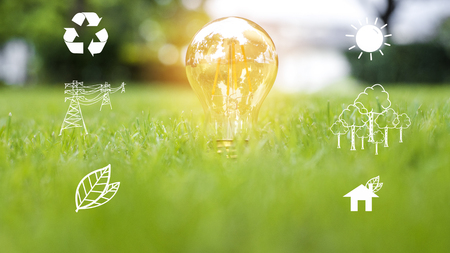 Foto de light bulb in green grass, Save earth concept - Imagen libre de derechos