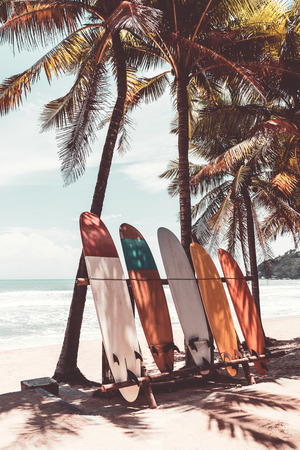 Photo pour Surfboard and palm tree on beach background. Travel adventure sport and summer vacation concept. Vintage tone filter effect color style. - image libre de droit