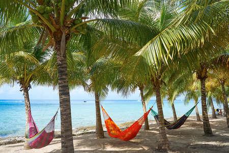 Foto de Cozumel island beach palm tree hammocks in Riviera Maya of Mexico - Imagen libre de derechos