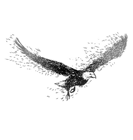 Illustration pour Vector illustration of a flying eagle - image libre de droit