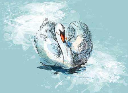 Illustration pour Colored hand sketch floating swan - image libre de droit