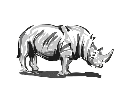 Illustration for Vector line sketch rhino - Royalty Free Image