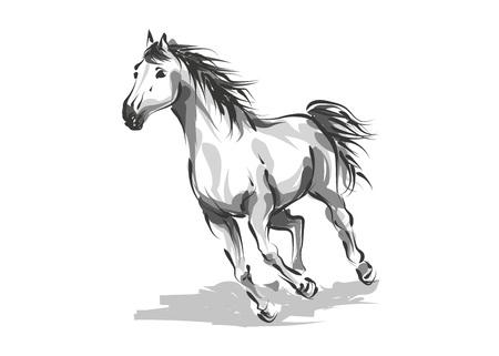 Illustration pour Vector digital drawing horse - image libre de droit