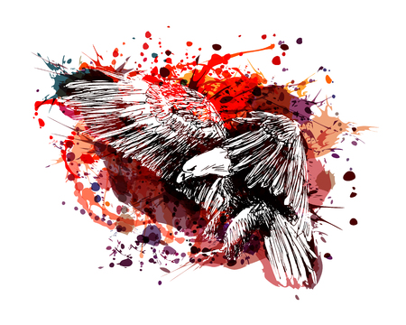 Illustration pour Vector color illustration of a flying eagle - image libre de droit