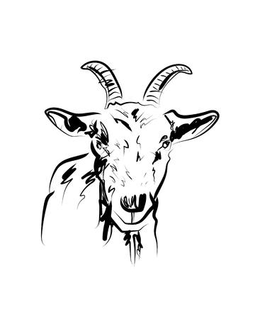Ilustración de Vector sketch of goat head - Imagen libre de derechos
