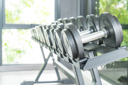 View of rows of dumbbells on a rack in a gym