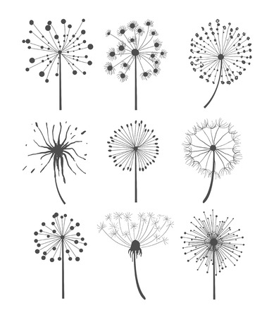 Illustration pour Abstract graphic dandelion collection in linear style, vector illustration set - image libre de droit