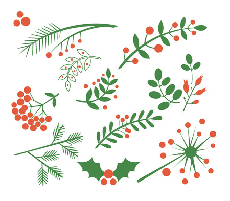 Illustration pour Red Berries, Fir and Leaves. Flat Vector Illustration Set - image libre de droit