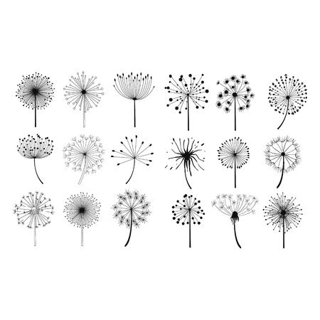 Illustration pour Dandelion Fluffy Seeds Flowers Hand Drawn Doodle Style Black And White Drawing Vector Icons Set - image libre de droit