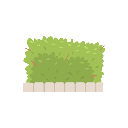 Illustration pour Green shrub fence, urban infrastructure element vector Illustration - image libre de droit