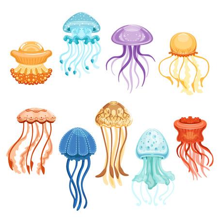 Ilustración de Colorful jellyfish set, swimming marine creatures watercolor vector Illustrations on a white background - Imagen libre de derechos