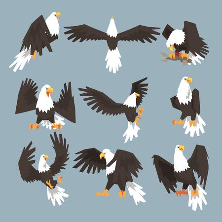 Ilustración de Bald Eagle An Image Set Hunting On Gray Background - Imagen libre de derechos